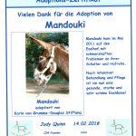 Corfu Donkey Rescue - Unser Blog rund um die Themen Tierschutz, Tierrechte und Soforthilfe !
