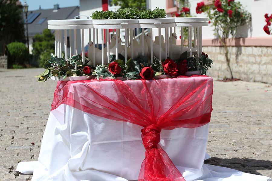 Hochzeitstauben – Tierleid in schöner Verpackung