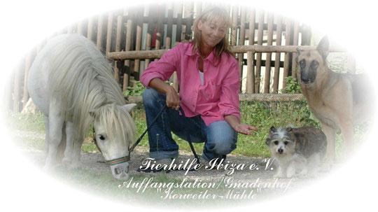 Logo Tierhilfe Ibiza | Tierschutz für alle Tiere | kvgd-stiftung.de